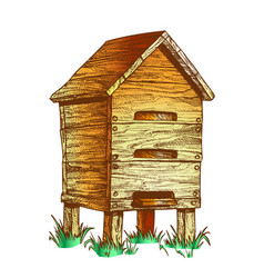 color wooden beehive apiary on grass apiculture vector image