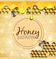 colorful honey vector image