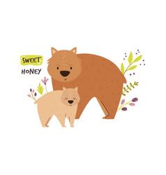 cute wombat family baby cartoon design vector image
