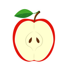 half red apple slice isolated vector image