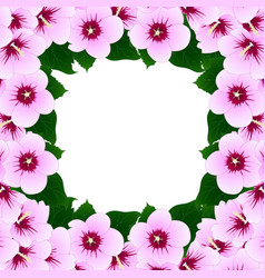 hibiscus syriacus - rose of sharon border2 vector image