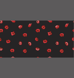 seamless pattern with red poppy flowers isolated vector image