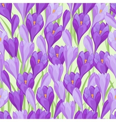 Spring flowers crocus natural seamless pattern vector image