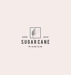 sugar cane logo icon vector image