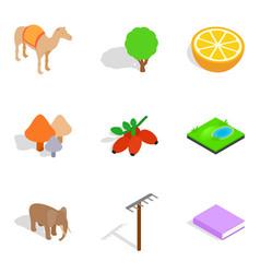 Animate icons set isometric style vector