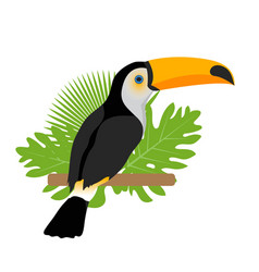 toco toucan icon is a flat cartoon style exotic vector image vector image