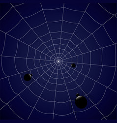 concentric web with spiders on a blue background vector image