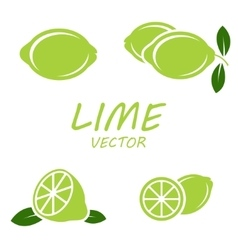 flat lime icons set vector image