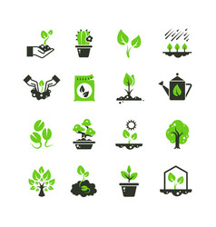 Tree sprout and plants icons seedling and vector