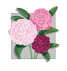 watercolor lettering bouquet peony flowers vector image