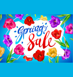 spring sale banner colotful tulips flowers blue vector image