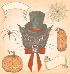 Hand Drawn Vintage Halloween Creepy Cat Set vector image