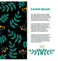 floral banner flyer with leaves and vector image