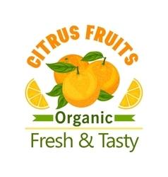 Orange citrus fruits icon organic fresh tasty vector
