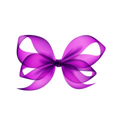 Purple violet transparent bow top view isolated vector