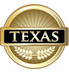 Texas gold icon vector