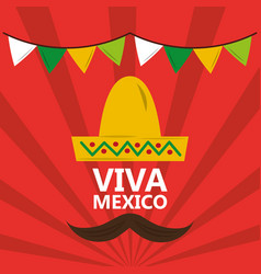 viva mexico hat mustache pennant red background vector image