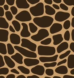 leather of giraffe 2 vector image