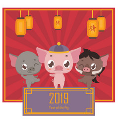 Chinese new year greeting with pig family vector