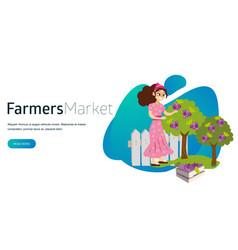 its organic harvest time flat horizontal banner vector image