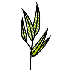 leaf natural ecology vector image