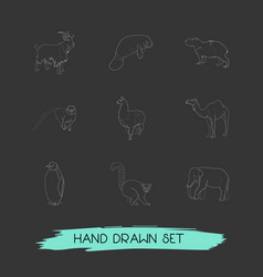 Set of zoo icons line style symbols with penguin vector