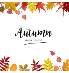 floral autumn season card design with leaf border vector image