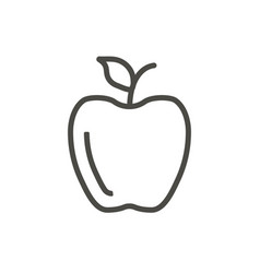 apple icon outline fruit line apple symb vector image