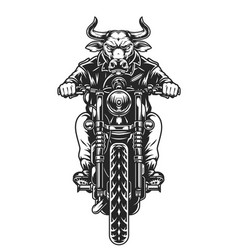 Biker with angry bull head driving motorcycle vector