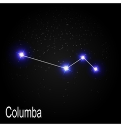 Columba Constellation with Beautiful Bright Stars vector image