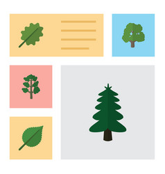 Flat icon natural set of linden forest park and vector