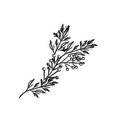 monochrome blurred silhouette of branch with vector image