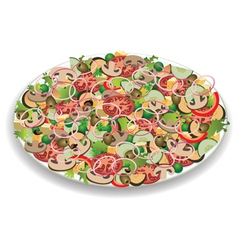 Vegetable salad vector