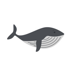 whales and dolphins sea design icon vector image