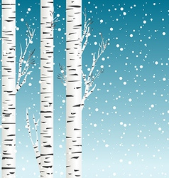 Winter background with birch trees and snowflakes vector image