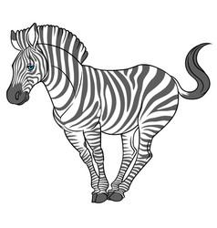 Cute naturalistic zebra vector