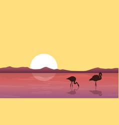 Lake scene with silhouette flamingo vector