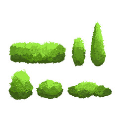 set of garden green bushes and vector image