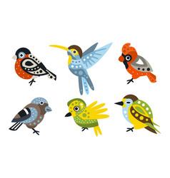set stylish birds different species vector image