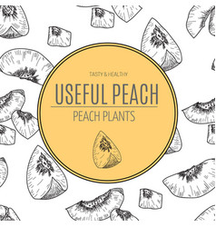 hand drawn sketch style seamless peach vector image vector image