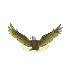 Awesome wild eagle logo vector