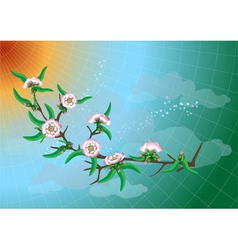 Branch of peach blossom vector image
