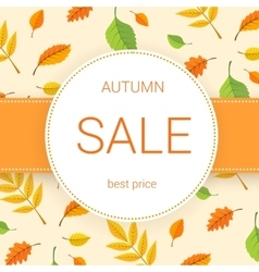 Colorful autumn leaves and sale text vector image
