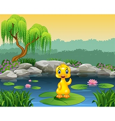 Cute baby duck waving on the lily water vector image