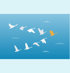 flock of birds leadership concept vector image