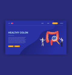 Human colon health doctor treatment concept for vector