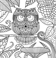 Owl coloring book vector