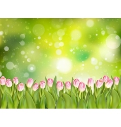Spring background with tulips EPS 10 vector image vector image