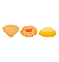 different cookie homemade breakfast bake cakes vector image vector image