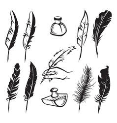 feather pens vector image vector image